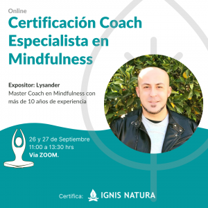 MINDFULNESS CURSO ONLINE